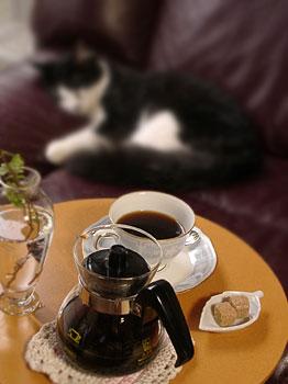 コーヒー豆のお取り寄せ感想